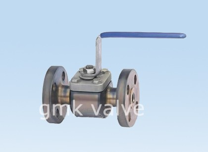 High definition Ljc100-2.5p Globe Check Valve -