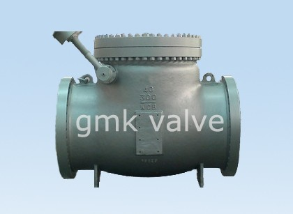 Swing Check Valve With Counter Weight