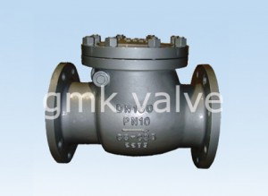 Special Design for Y Type Check Valve -