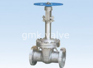 Manufacturer of Flange Type Gate Valve -