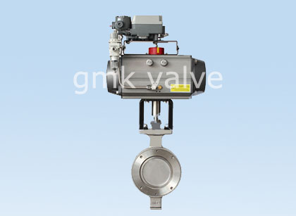 New Fashion Design for Wafer Check Valve -