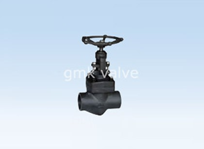 Жасалма с Threaded Socket косы Globe Valve