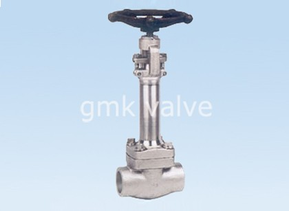 Hot Selling for Carbon Steel Plug Valve -