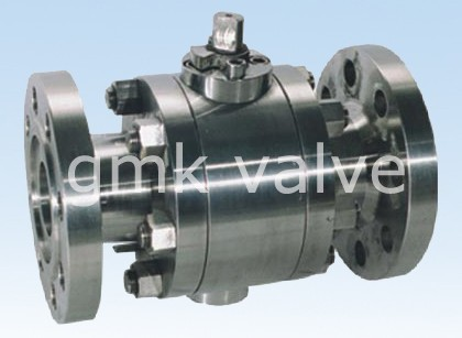 Fattu galleggiante Valve Ball Steel