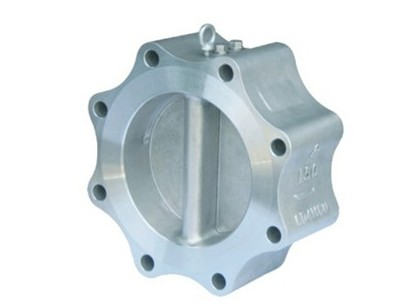 Integrated Lug Type Double-disc Swing Check Valve