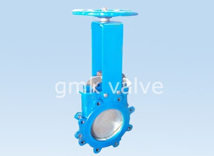 OEM China Y-type Globe Valve -