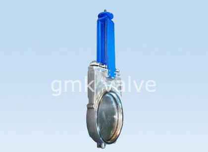 One Piece Bid-direction Slurry Valve