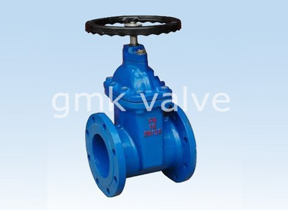 Rezilient Seated Gate Valve